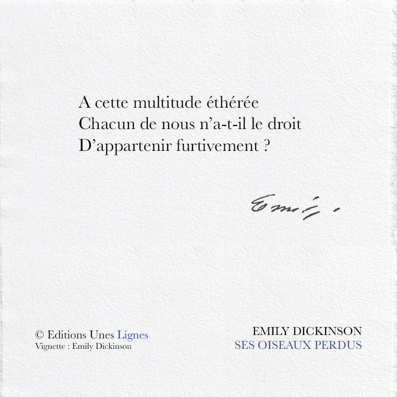 Editions Unes Ses Oiseaux Perdus